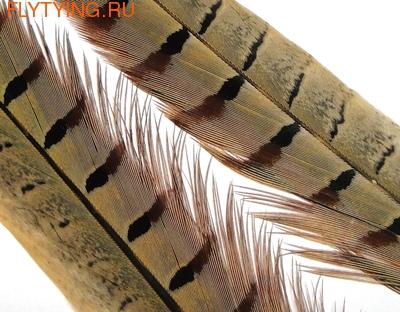 WAPSI 53057 Фазана охотничьего самца хвостовые перья PHEASANT CENTRE TAILS