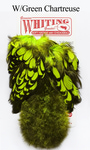 WHITING™ 53214 Перья курицы American Hen Soft Hackle with Chicabou(SH/C)