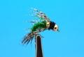 A.Jensen 14254 Мушка нимфа DBL BH Birds Nest Caddis Green