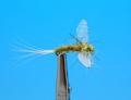 Artflies 11198 Сухая мушка Burnt Wing Spinner Olive