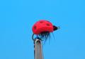 Pacific Fly Group 11222 Сухая мушка Ladybug