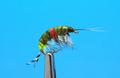 14031 Мушка имитация бокоплава Freshwater Shrimp Dk.Olive Orange Spot