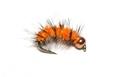 14088 Мушка нимфа с золотистой головкой GH Wooly Worm Orange