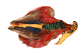 53144 Шкура золотого фазана Golden Pheasant Whole Skin (без хвоста)
