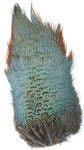 53152 Перья со спины фазана Ringneck Rump Patch