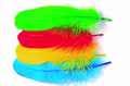 53164 Гусиные перья Goose Shoulder Stiffs