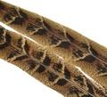 53178 Центральные хвостовые перья самки фазана Hen Pheasant Centre tails pair