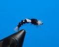 14201 Мушка нимфа Buzzer Pupa Black
