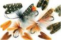 58338 Заготовки для крылышек ручейника Natural Feather Caddis Wings