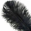53212 Перья страуса Ostrich Plumes