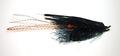 16027 Мушка имитация креветки RM Prawn Black
