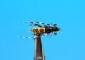 14237 Мушка нимфа куколка ручейника McPhail Caddis Pupa Var