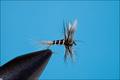 11154 Сухая мушка Mosquito