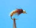 14242 Мушка нимфа куколка ручейника GH TubBody Caddis Pupa Cinnamon