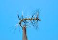 16099 Кумжевая мушка Mysis