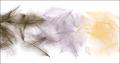 53276 Перья утки Bulk Duck Cul de Canard (CDC) - 1 gr