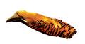 53285 Перо золотого фазана Golden Pheasant Complete Head