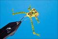 15315 Мушка стример Frog