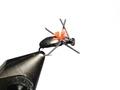 11057 Сухая мушка High Vis Ant