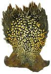 53050 Скальп джунглевого петушка Jungle Cock