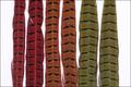 53059 Перья фазана Ringneck Phesant Center Tails